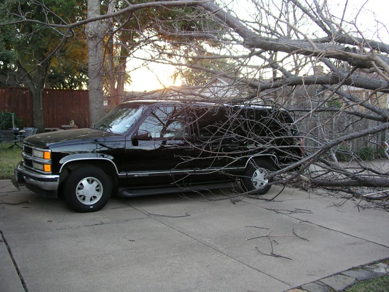 A windstorm blew our neighbor's chinaberry tree onto my suburban!