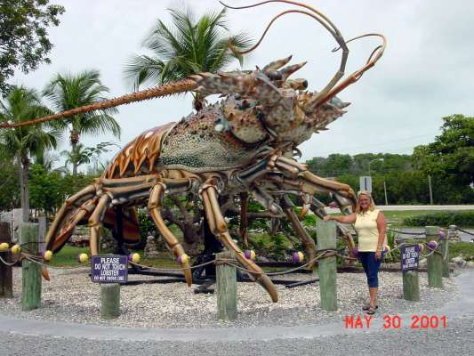 Now THIS is a LOBSTER!